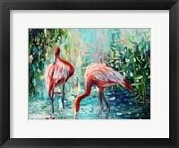 Framed Flamingo's Delight 1