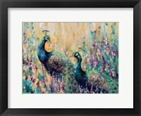 Framed Peacocks In The Field 1