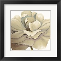 Framed Cream Silken Bloom