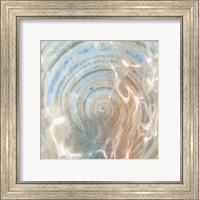 Framed Shell Abstract 2
