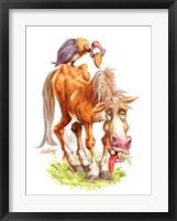 Framed Get Well Old Horse