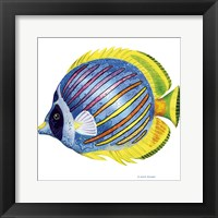 Fish 1 Blue-Yellow Framed Print