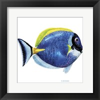 Fish 4 Blue-Yellow Framed Print