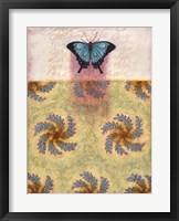 Framed Tashmoo Butterfly