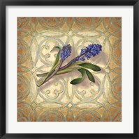 Framed Purple Hyacinth
