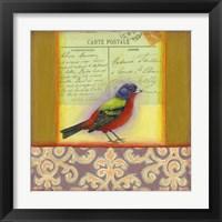 Framed Carte Postale Bird 1