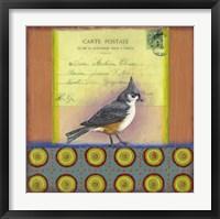 Framed Carte Postale Bird 2