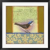 Framed Carte Postale Bird 3