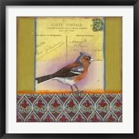 Framed Carte Postale Bird 4