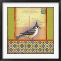 Framed Carte Postale Bird 5