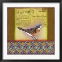 Framed Carte Postale Bird 6
