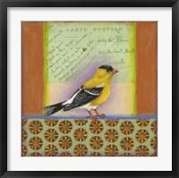 Framed Carte Postale Bird 7