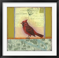 Framed Carte Postale Bird 8