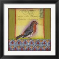 Framed Carte Postale Bird 9