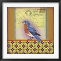 Framed Carte Postale Bird 11
