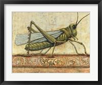 Framed Grasshopper 1