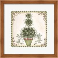 Framed Topiary II