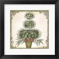 Framed Topiary III