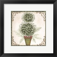 Framed Topiary IV