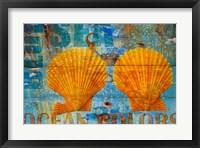 Framed Blue Sea Shells