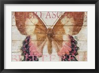 Framed Butterfly Wood Series V