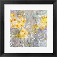 Framed Dusty Miller