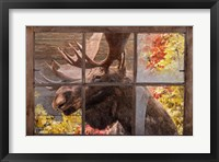 Framed There's a Moose at the Window