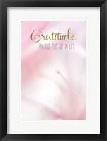 Framed Gratitude Unlocks the Joy