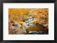 Framed Fall Creek