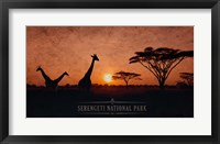 Framed Vintage Sunset with Giraffes in Serengeti National Park, Africa