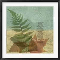Framed Muir II