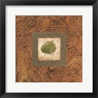 Framed Sedona Naturals A