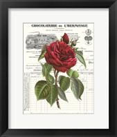 Framed Heirloom Roses A
