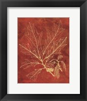 Framed Golden Oak I