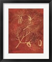 Framed Golden Oak II