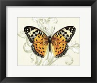 Framed Butterfly Theme IV