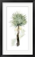 Palm in Watercolor II Framed Print