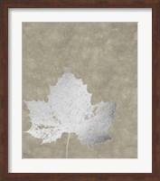 Framed Silver Foil Leaf II on Lichen Wash