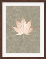 Framed Rose Gold Foil Leaf IV on Lichen Wash