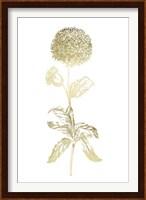 Framed Gold Foil Singular Beauty II