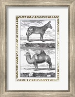 Framed Gilded Safari II - Metallic Foil