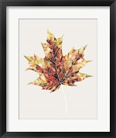 Framed Fall Mosaic Leaf III