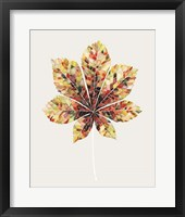 Framed Fall Mosaic Leaf IV