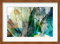 Framed Agave Abstract II