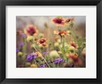 Wild Blooms I Framed Print