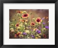 Wild Blooms IV Framed Print