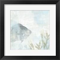 Coastal Fresco I Framed Print