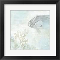 Coastal Fresco II Framed Print