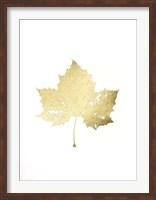Framed Gold Foil Leaf II
