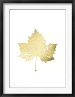 Framed Gold Foil Leaf II